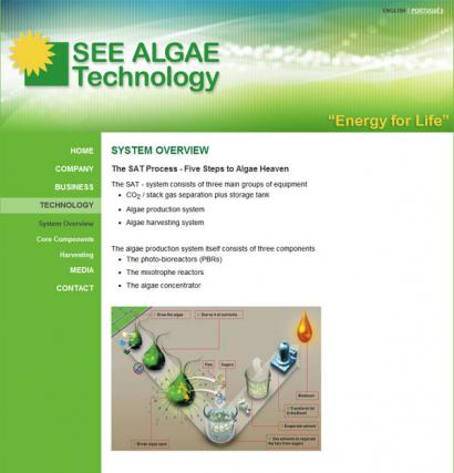 article_51_seealgae_410.jpg